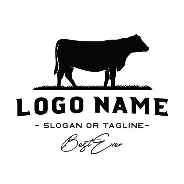 logiciel de création logo